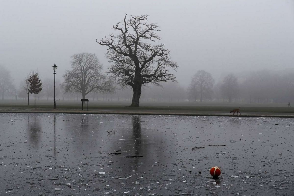 A basketball lies on a frozen pond during a foggy morning on Clapham Common.