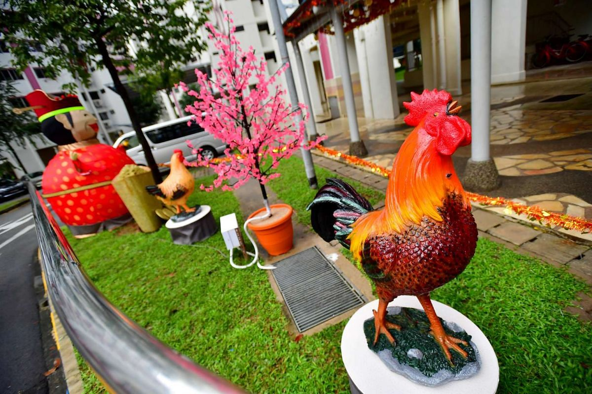 One of the five roosters which Mr Tan Koon Tat bought from China.