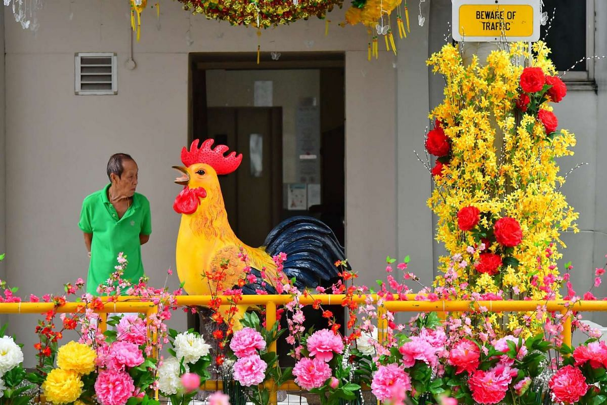 Neighbour of Mr Tan Koon Tat, with the rooster put up by Mr Tan at Block 179 Woodlands Street 13 on Jan 26, 2017.