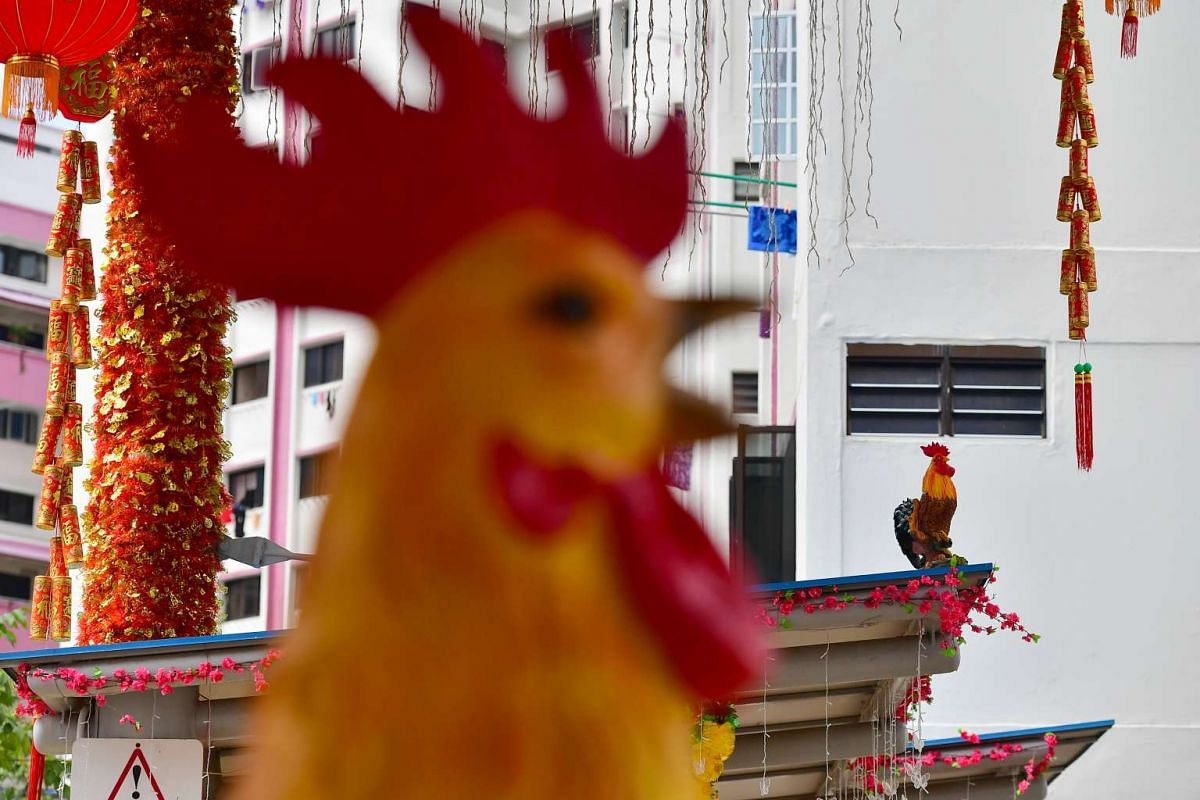 The roosters bought from China, near the gantry of the car park between Block 178 and Block 179 Woodlands Street 13, on Jan 26, 2017.