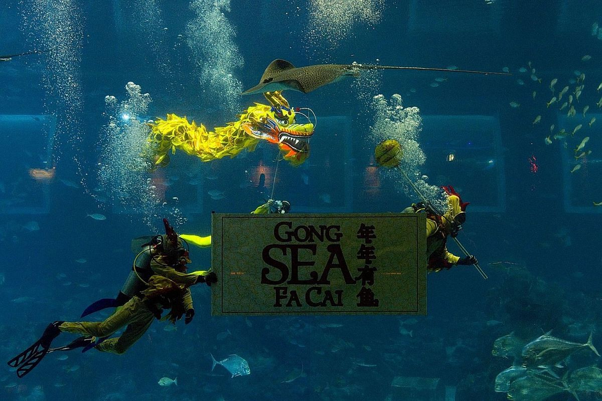 S.E.A. Aquarium is presenting an underwater show about a monkey making way for the rooster with the help of an underwater dragon. Fowl play at Jurong Bird Park. Mr Henry Ng is one of Singapore's last few full-time lion dance costume makers. Sentosa w