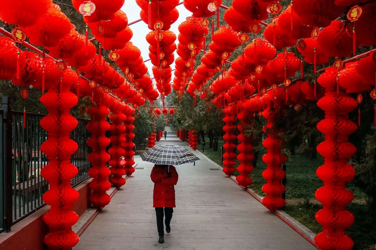 A woman with an umbrella passes by red lanterns put up at Ditan Park in Beijing to celebrate Chinese New Year, on Jan 16.