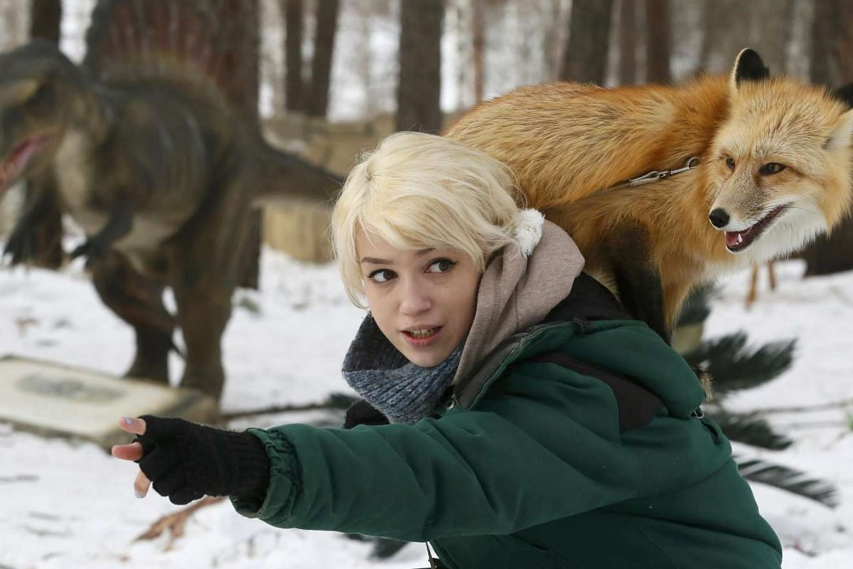 Zoo employee Vlada Zapolskaya walks with Ralf, an 11-month-old red fox, during a training session which is a part of a programme of taming wild animals for research and interaction with visitors at the Royev Ruchey Zoo in Krasnoyarsk, Siberia on Feb