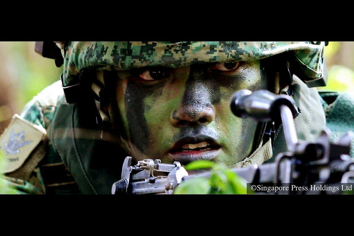 2011: Camouflage and taking aim with weapon are fundamental to a soldier's training.