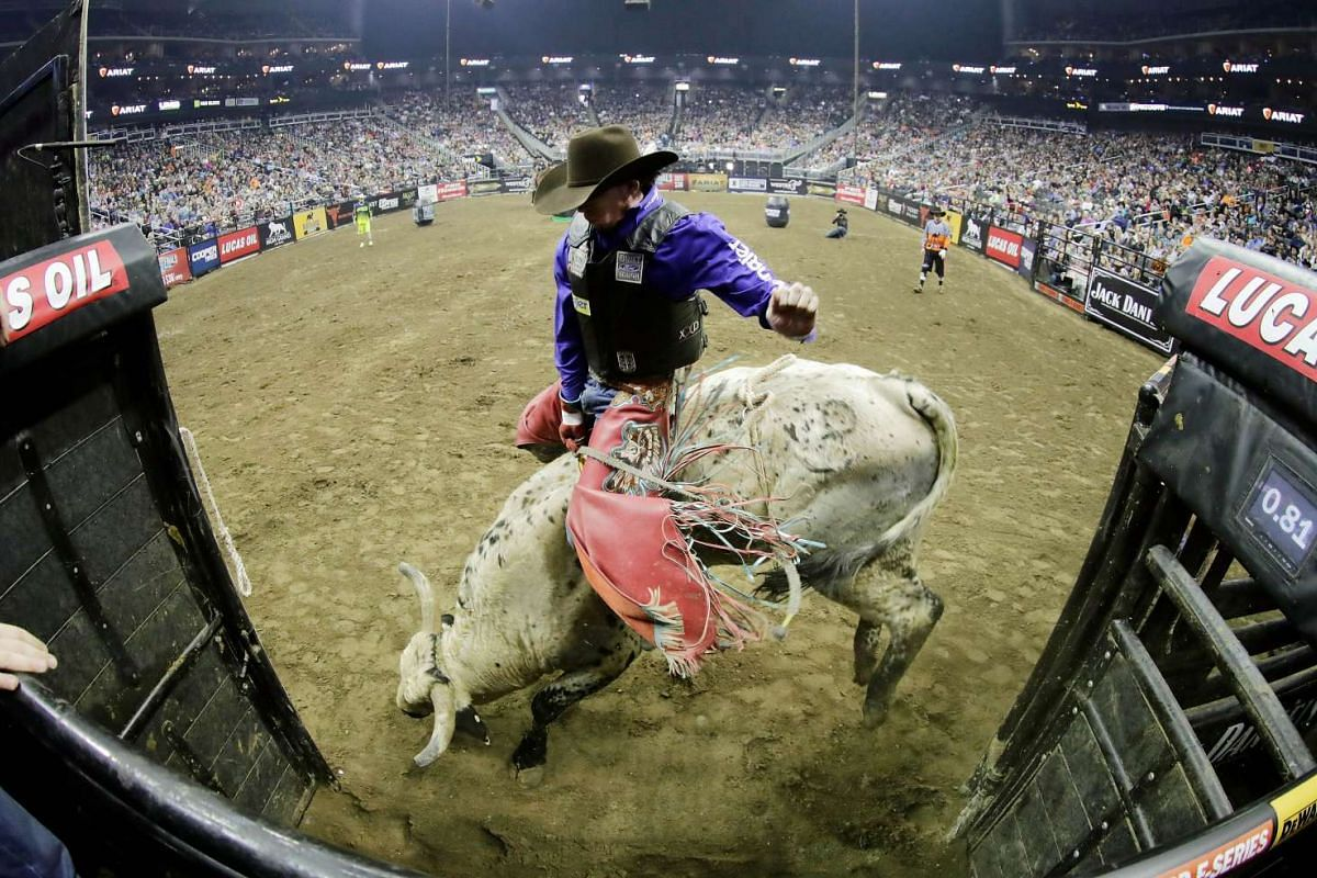 Mason Lowe rides HD during round 2 of the PBR Kansas City Invitational at the Sprint Center on February 12, 2017 in Kansas City, Missouri. PHOTO: GETTY IMAGES/AFP