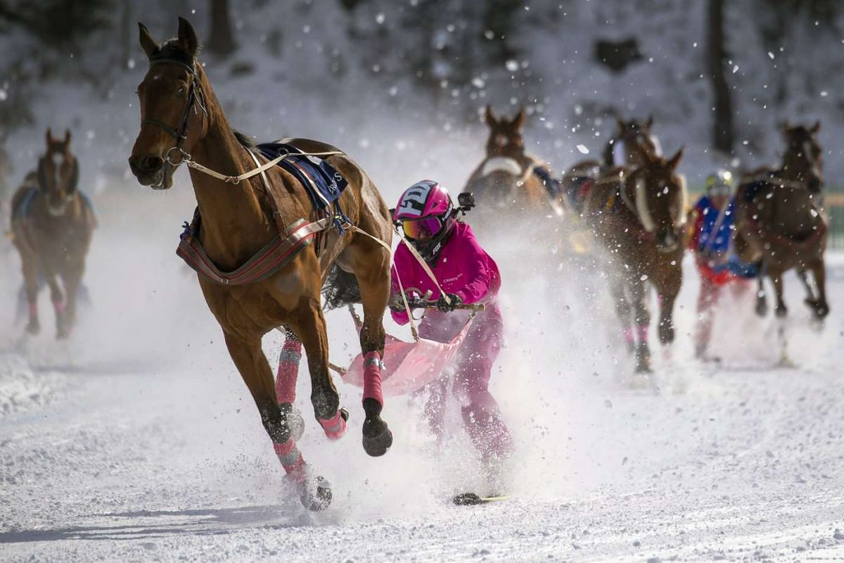 Valeria Holinger with Usbekia is on her way to win the Skikjoering Credit Suisse GP of Celerina 2,700m on the frozen lake of St. Moritz on the first weekend of the White Turf horse races in St. Moritz, Switzerland, 12 February 2017. PHOTO: EPA
