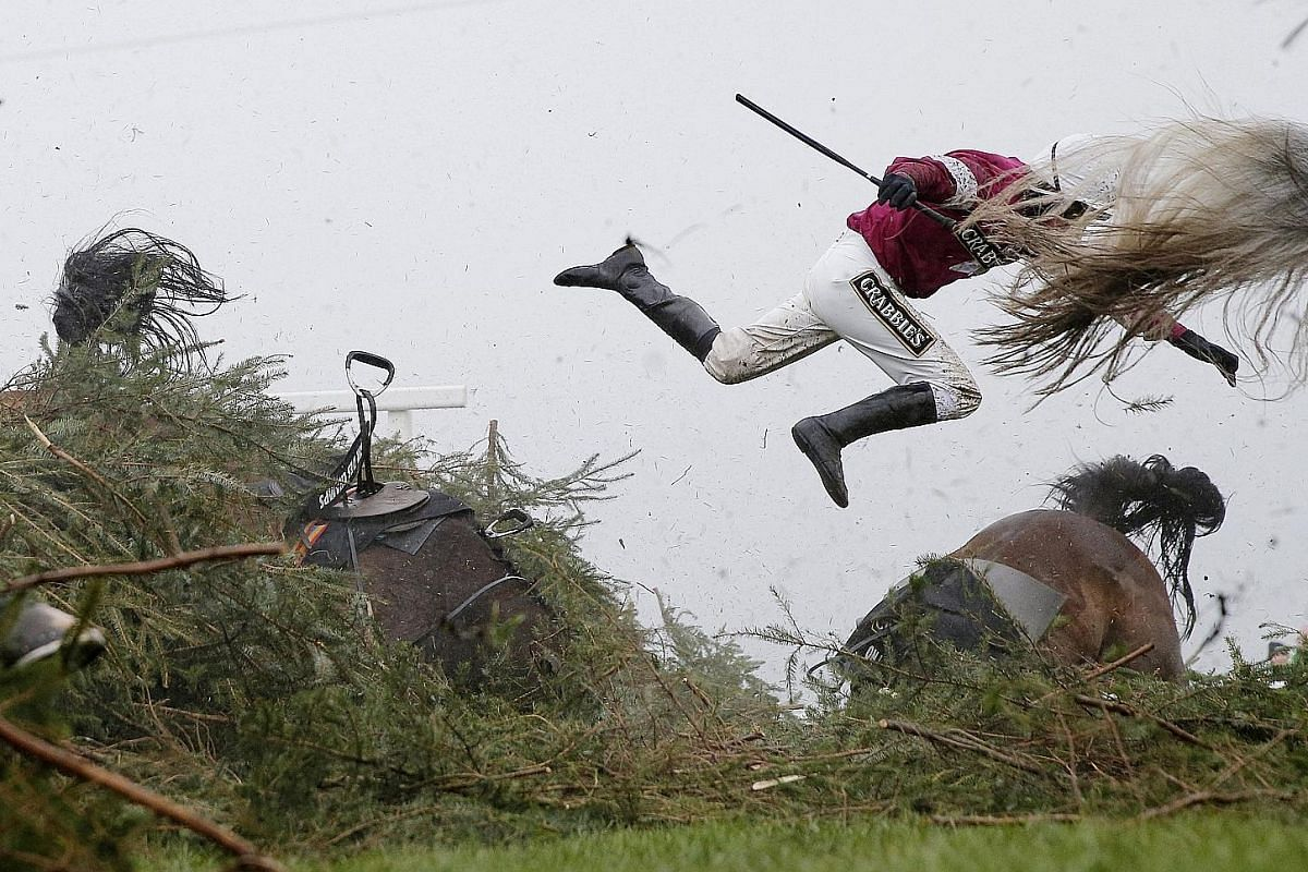 Grand National Steeplechase.