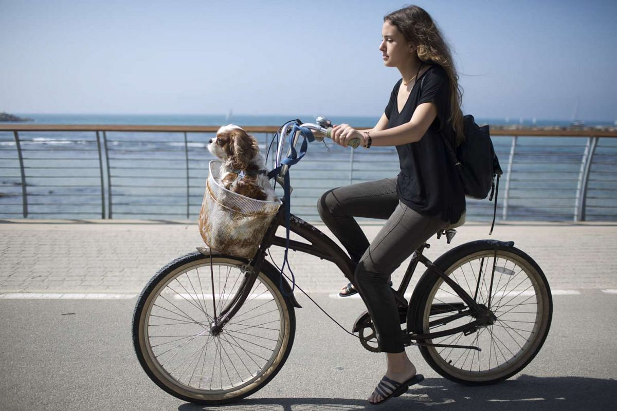 A woman riding a bike, carrying her dog in Tel Aviv, Israel, on Feb 25, 2017.