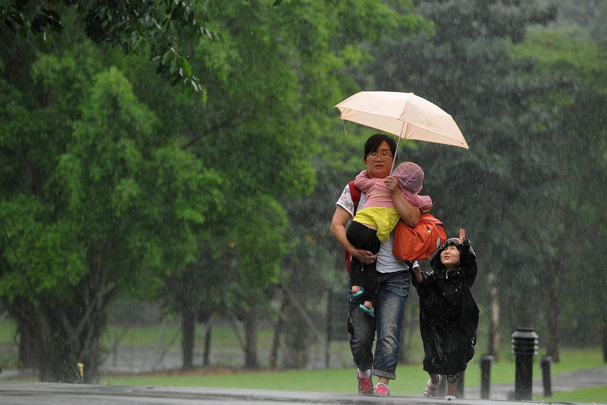 A woman and her two children getting caught in heavy rain at the Singapore Botanic Gardens on May 11, 2016.