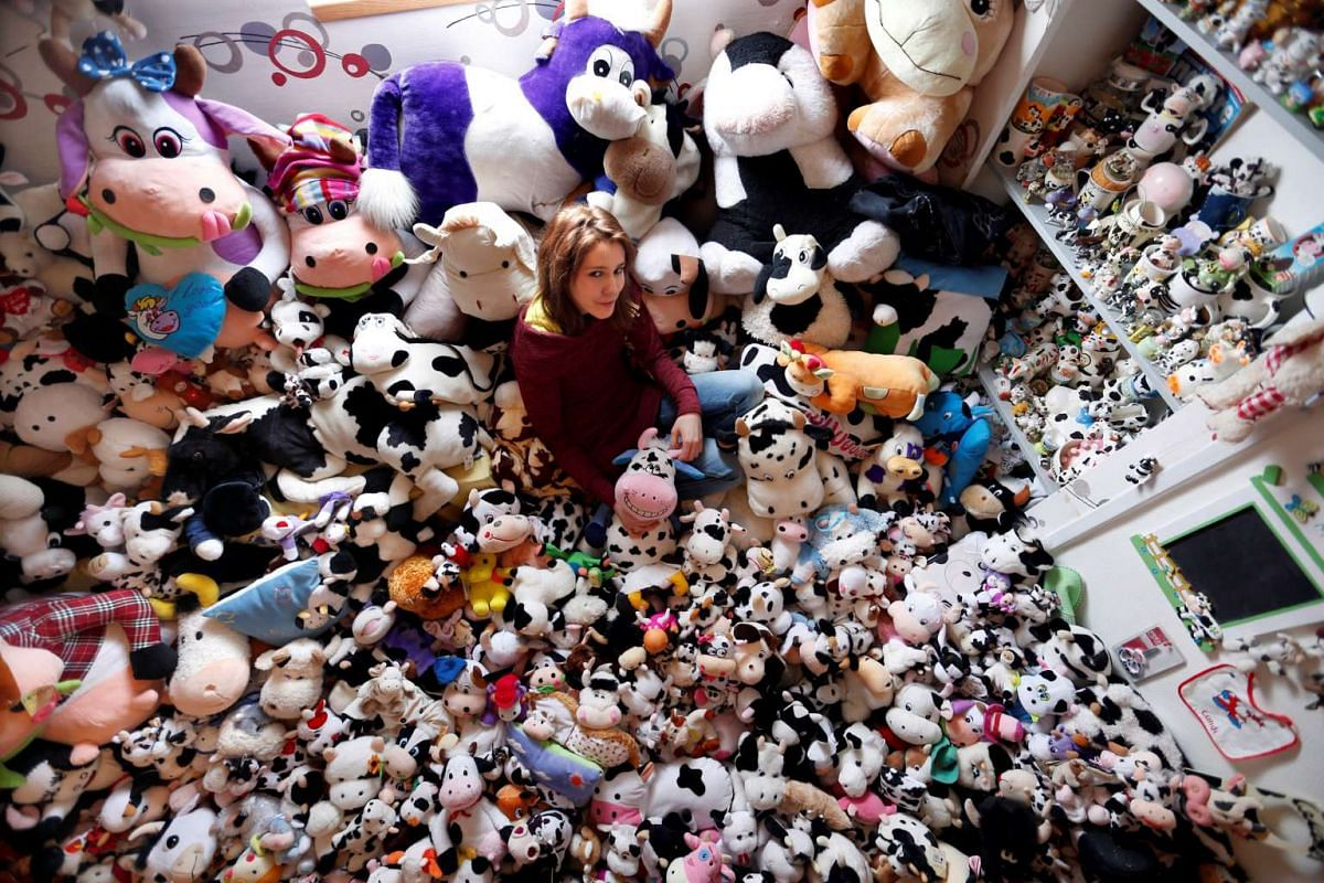 French Model Emeline Duhautoy poses with her collection of 1,679 stuffed toy cows she has been collecting for over seven years at her home in Saint-Omer, northern France, March 12, 2017. PHOTO: REUTERS