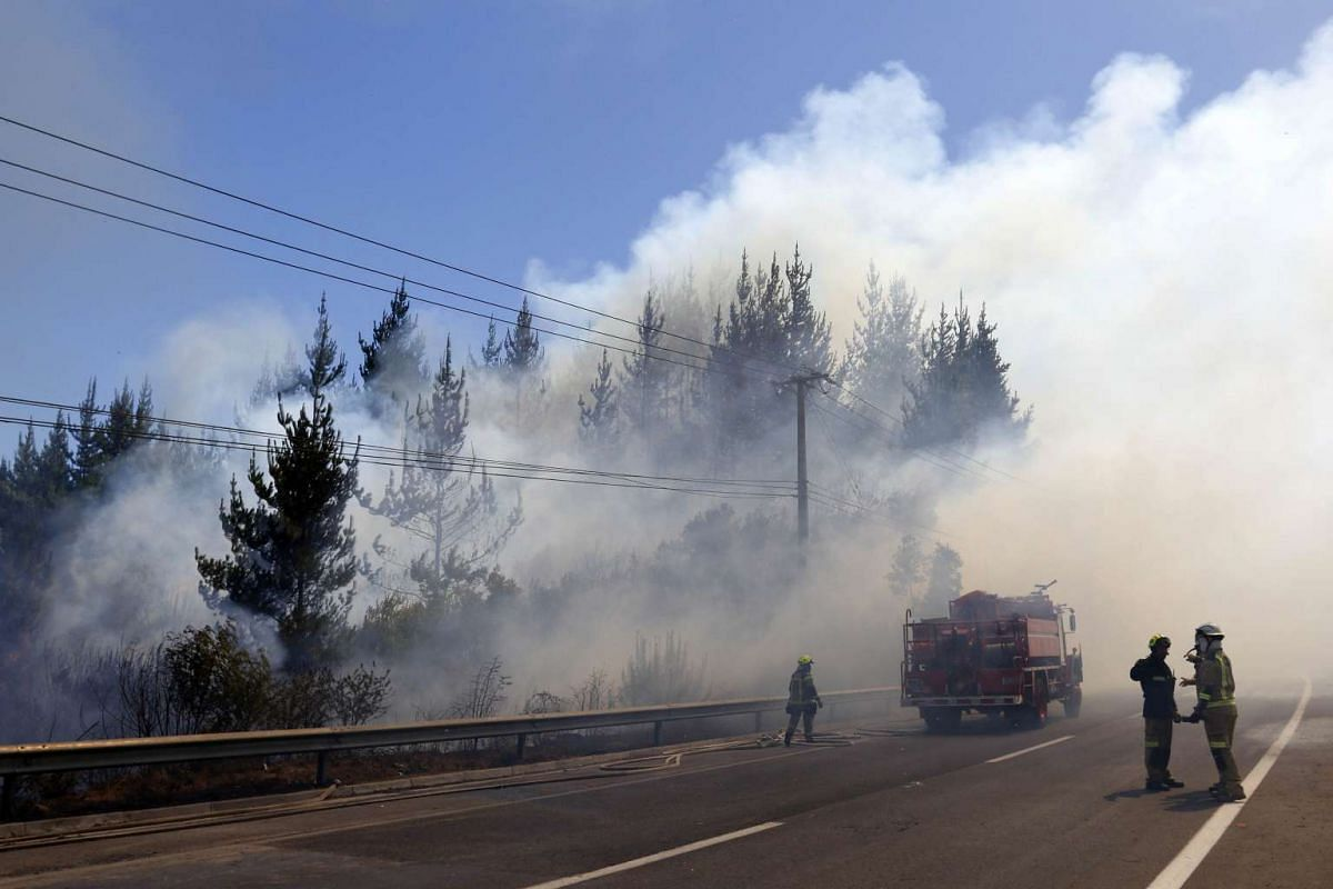 Firemen work to control a forest fire at the route 66 access to Vina del Mar, Chile, on March 12, 2017.