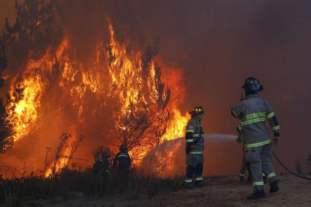 Firemen work to control a forest fire at the route 66's access to Vina del Mar, Chile, on March 12, 2017.