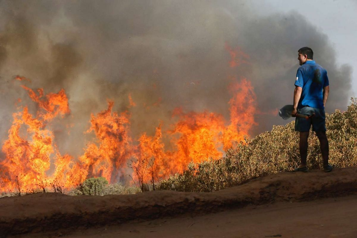 A resident looks at a wildfire in Vina del Mar, Chile, on March 12, 2017.
