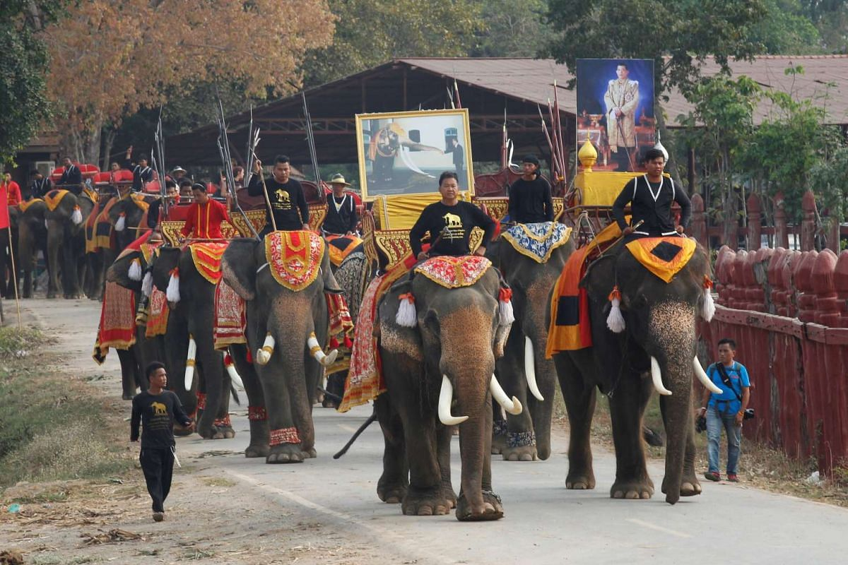 Mahouts ride their elephants during Thailand's National Elephant Day celebration on March 13, 2017.