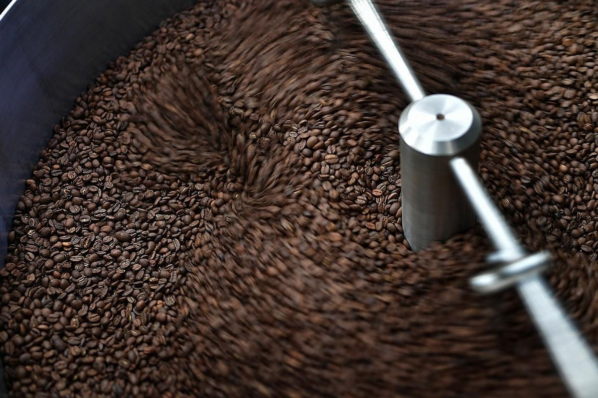 Coffee beans being dried (left) and roasted.