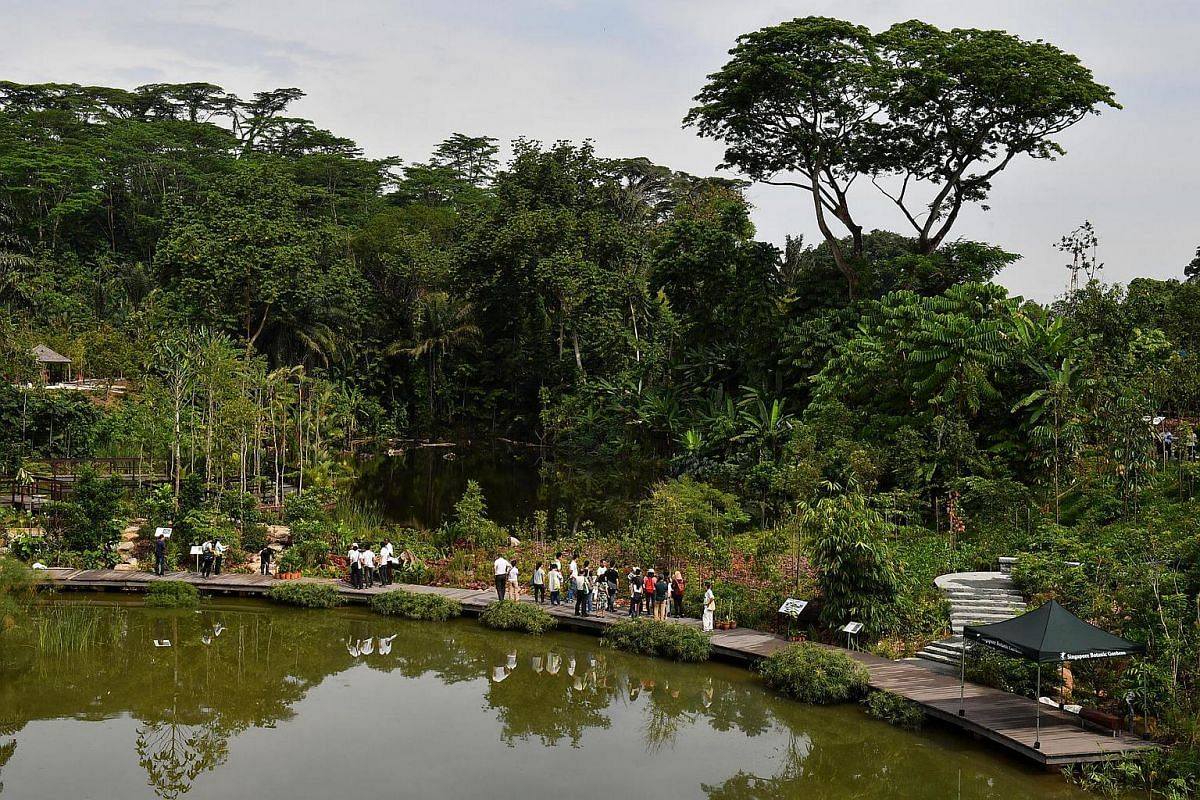 People tour the Botanists' Boardwalk at the Keppel Discovery Wetlands.