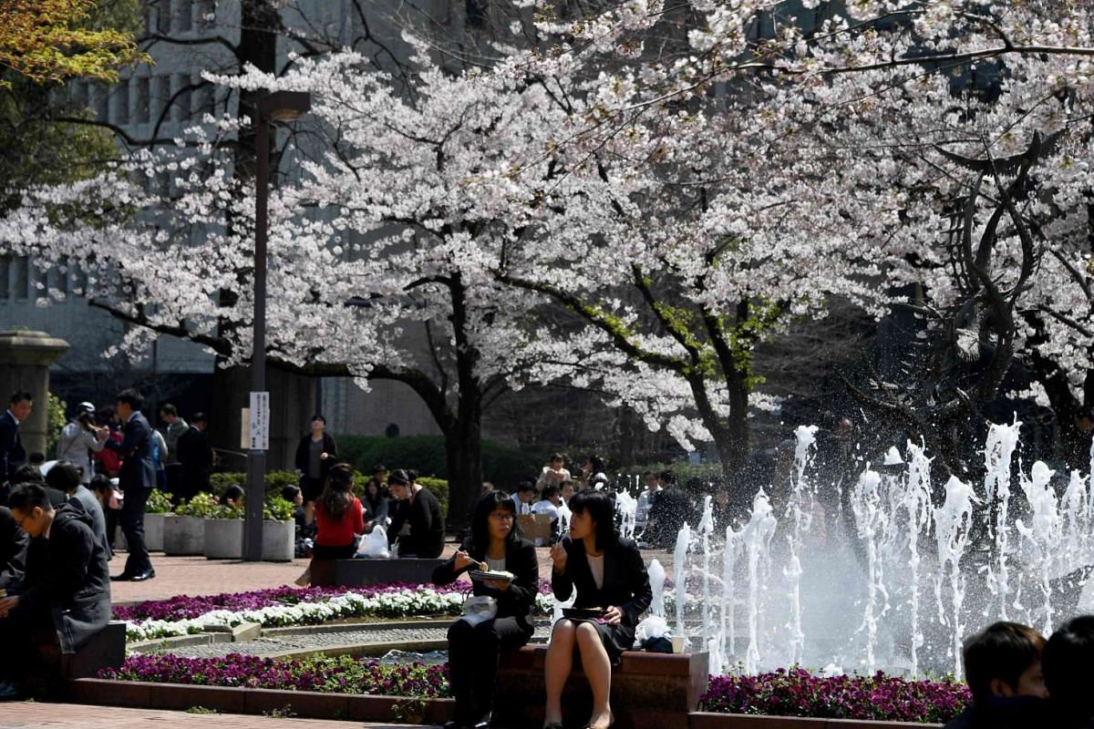 White-collar workers having lunch underneath cherry blossom trees at a park in Tokyo on April 3, 2017.