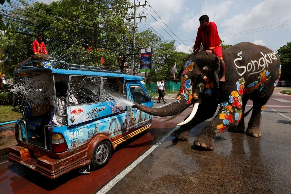 An elephant sprays tourists with water in celebration of the Songkran Water Festival in Ayutthaya province, north of Bangkok, Thailand April 11, 2017. PHOTO: REUTERS