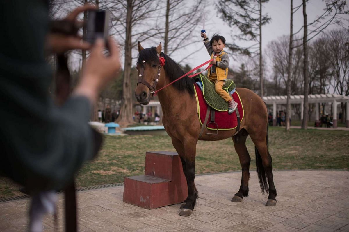 A boy poses for a photo as he sits on a horse at the Central Zoo in Pyongyang on April 16, 2017.