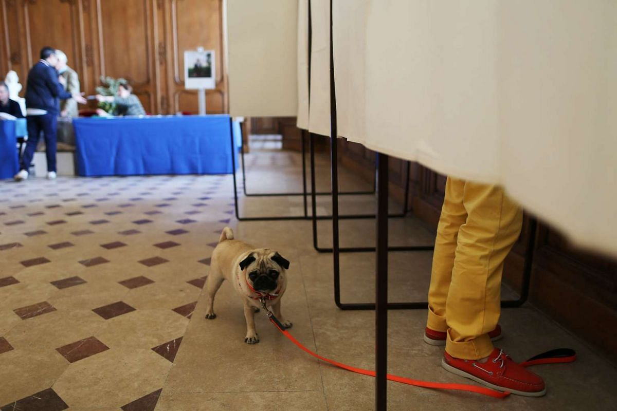 A dog waits outsode a polling booth as his owner prepares to cast his ballot in Caen, northwestern France on April 23, 2017 during the first round of the Presidential elections. PHOTO: AFP