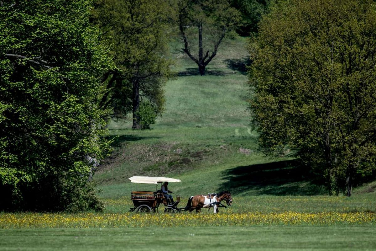 Visitors can explore the park on a a horse-drawn carriage.