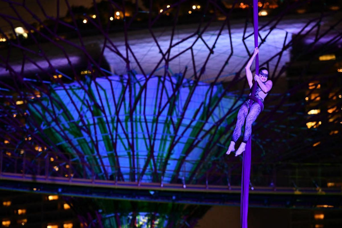 Performers on aerial silk will show what it is like to live the high life among the trees.