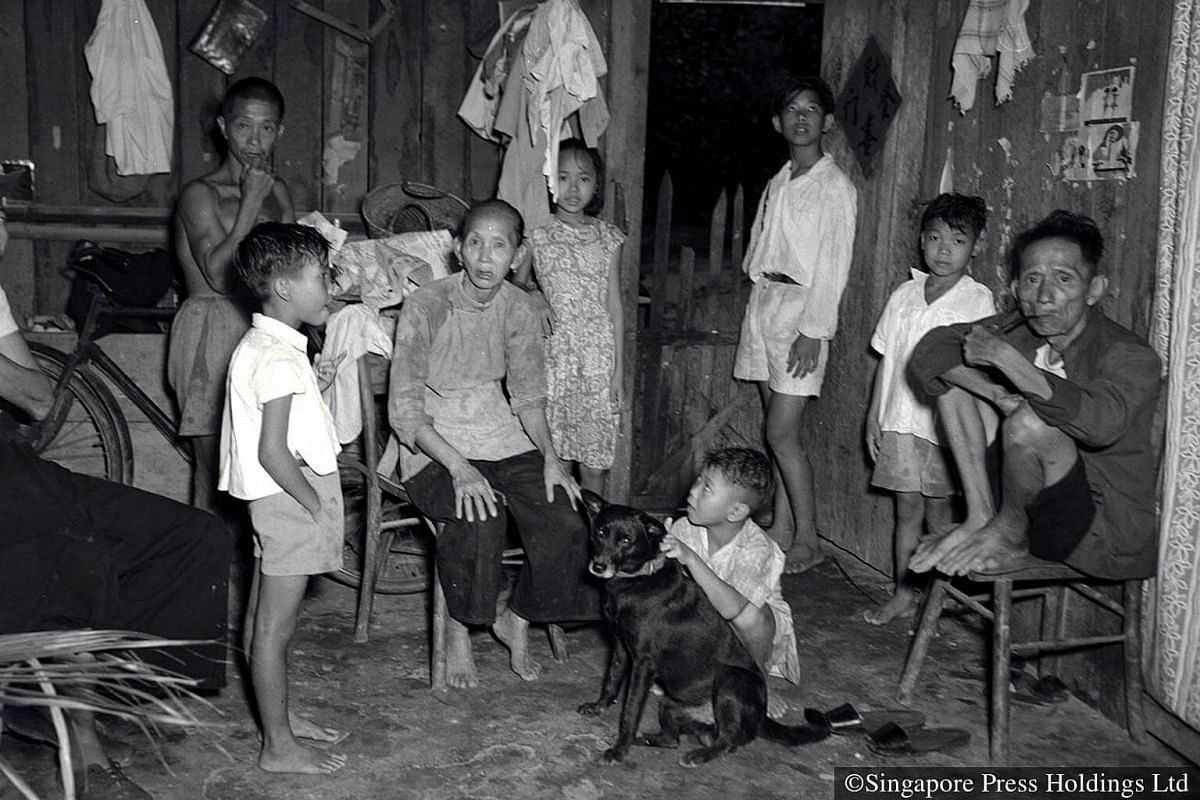 1952: Large families including grandparents and pets shared a small hut.