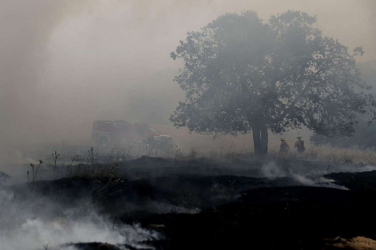 Firefighters monitor a controlled burn at Bouverie Preserve on May 30, 2017 in Glen Ellen, California. Cal Fire, U.S. Forest Service and local firefighters conducted a controlled burn as fire crews throughout the state of California prepare for what