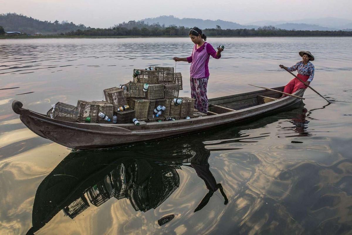 Ethnic Shan-ni women set shrimp traps in Indawgyi Lake in Kachin State, Myanmar.
