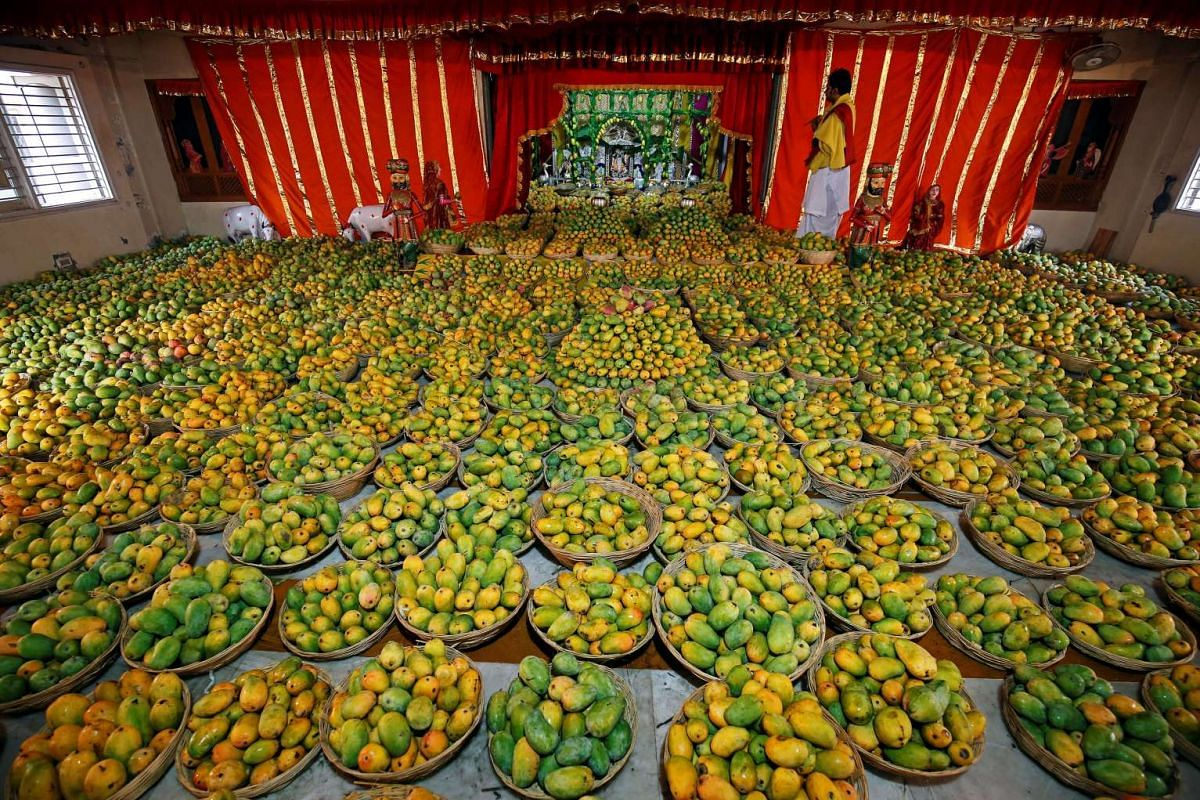 A priest stands next to mangoes offered by devotees to Hindu God Krishna during a mango festival at a temple in Ahmedabad, India, June 11, 2017.