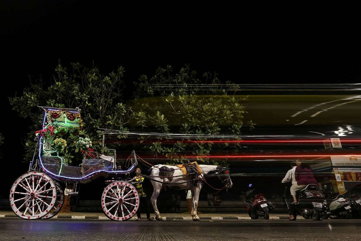 These colorful and fancy decorated Victoria's carriages are being used for joyrides for a small distance route at the two iconic landmark, one is the Taj Mahal Palace hotel near Gateway of India, and second is the Trident hotel, near Nariman point.
