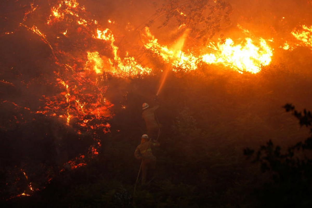 Firefighters working to put out a forest fire near the village of Fato in central Portugal on Sunday (June 18).
