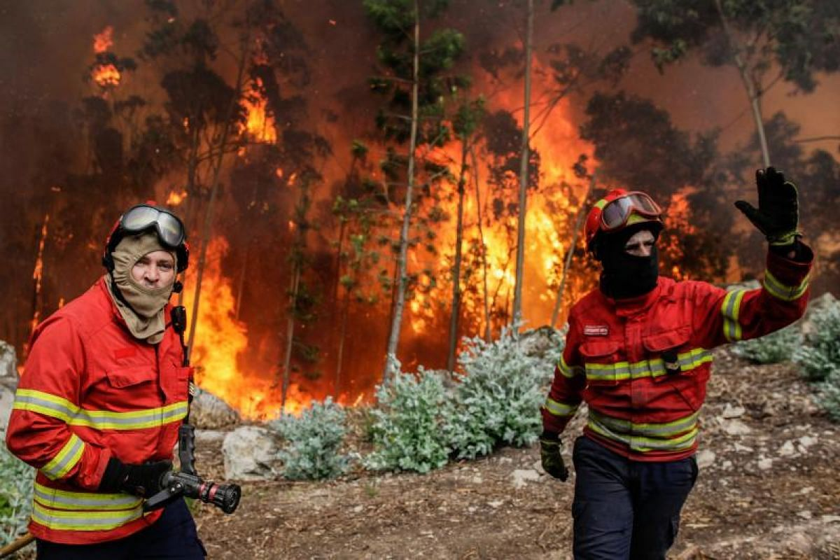 Firefighters battling a forest fire in Vale das Porcas, Alvaiazere, central Portugal, on Sunday (June 18).