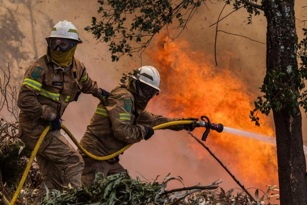 Firefighters battling a fire in Vale das Porcas, Alvaiazere, central Portugal, on Sunday (June 18).