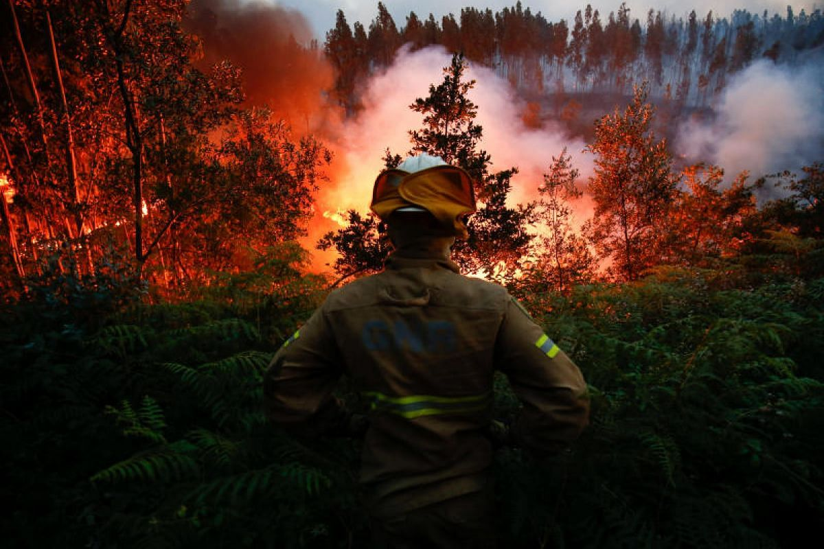 A firefighter watching a forest fire near the village of Fato in central Portugal on Sunday (June 18).