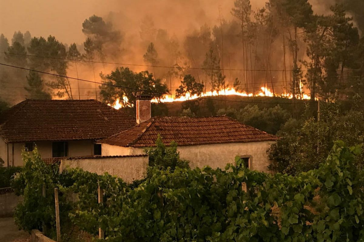 A forest fire approaching houses in the village of Atalaia Cimeira near Pedrogao Grande, central Portugal, on Sunday (June 18).