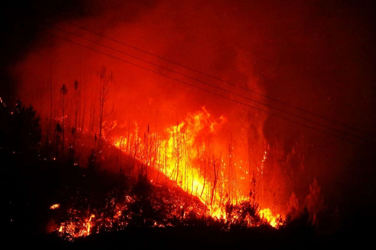 Flames of an approaching forest fire are seen in Carvalho, near Gois, Portugal, June 19, 2017.