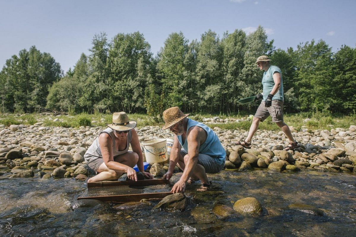 Marlise Luedi, and her husband, Willi, veteran goldpanners from Switzerland, searching for nuggets as James Linnett, a British newcomer to goldpanning, looks about, in the Elvo River near Cerrione, Italy on June 24, 2017.