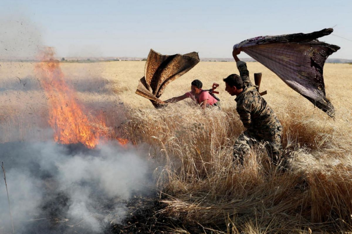 Kurdish fighters from the People's Protection Units extinguish a fire in a wheat field burned during clashes with Islamic State militants in Raqqa, on June 15, 2017.