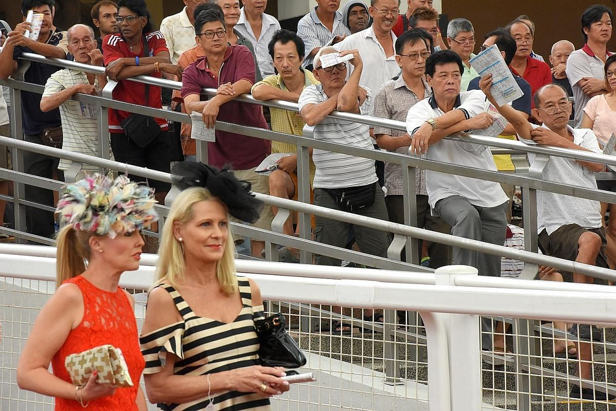 Members of the public looking at the different types of tracks used for horse racing - such as grass turf and synthetic Polytrack - at STC's carnival on June 10. The bus tour also took visitors past the stables. STC says the annual carnival is a good