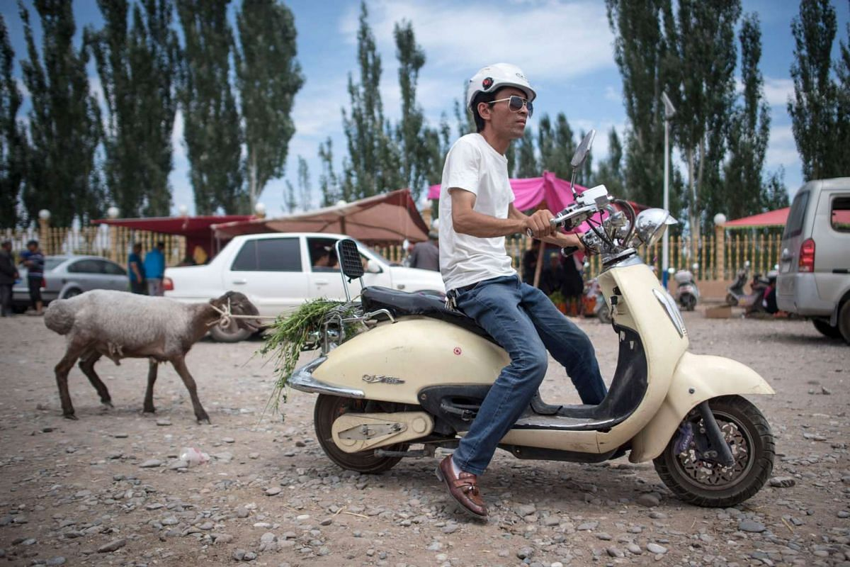 A man pulling a sheep with his scooter at the livestock market in Kashgar in China's Xinjiang Uighur Autonomous Region, a day before the Eid al-Fitr holiday.