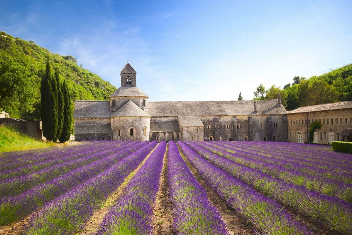 Provence, with its slow pace, pleasant climate and abundance of nature, is a good place to relax in. The lavender fields of Senanque Abbey (above) near the village of Gordes in Provence, France.
