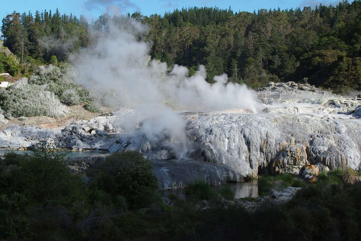 Pohutu is the most consistent geyser in the world, erupting once or twice an hour, shooting boiling water up to 30m in the air.