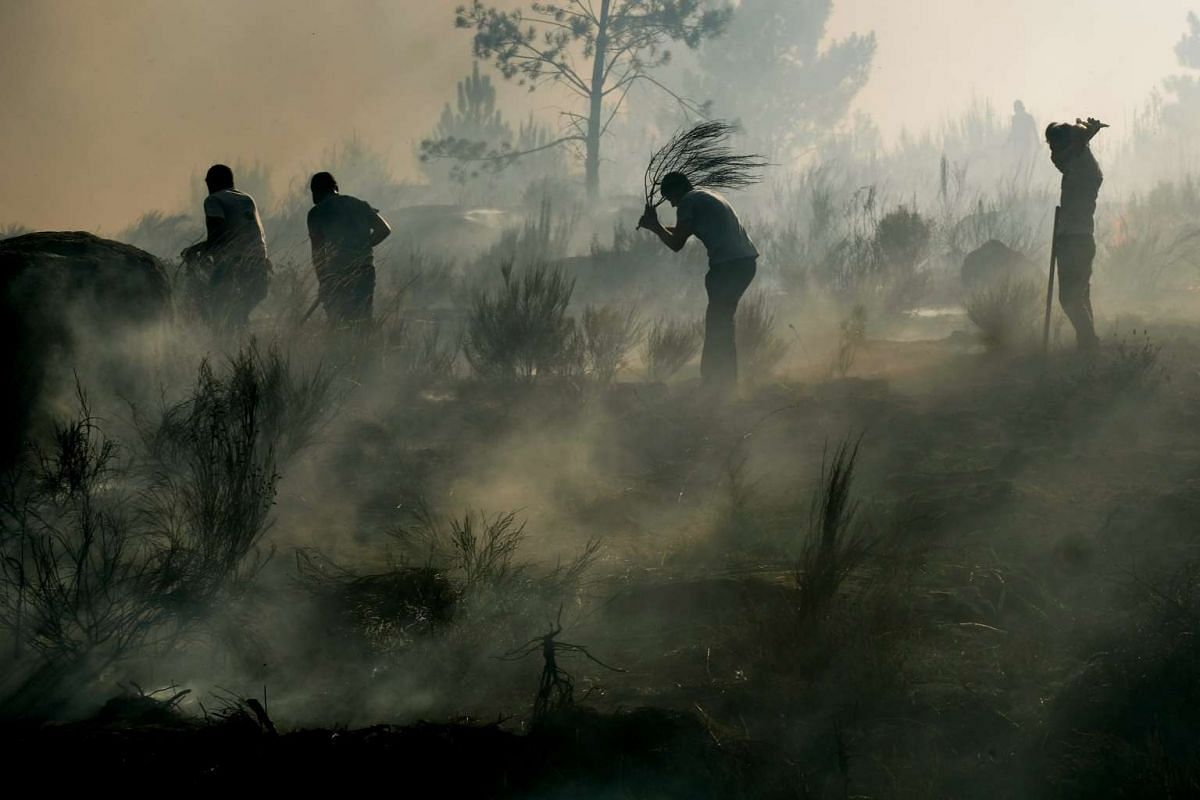 People take part in firefighting efforts during a forest fire at Abrunhosa-a-Velha and Torre de Tavares village in Mangualde district, central Portugal, July 17, 2017. PHOTO: EPA