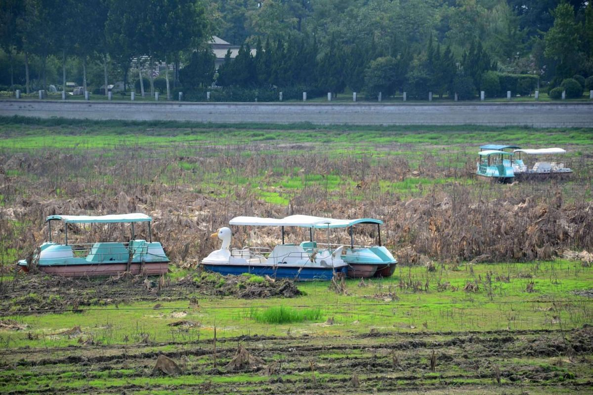 This photo taken on July 24, 2017 shows boats sitting in the dried-up bottom of the Mihe river in Weifang in China's eastern Shandong province. Once used for leisure activities, the river has dried up due to drought over the past few years and is now