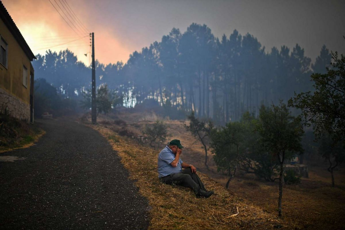 A villager from Sanguinheira sits on the roadside as a wildfire approaches the village, in Macao, central Portugal, on July 25, 2017.