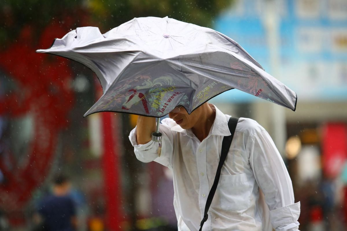 A man holding up an umbrella, as strong winds brought by Typhoon Hato whip through Foshan, Guangdong province, China, on Aug 23, 2017.
