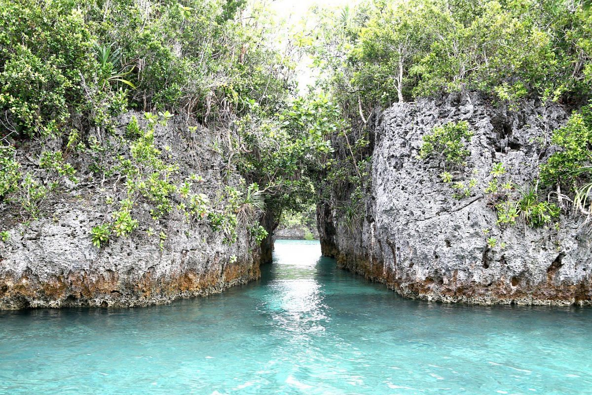 Bair Island's landscape boasts clear waters and beautiful lagoons.