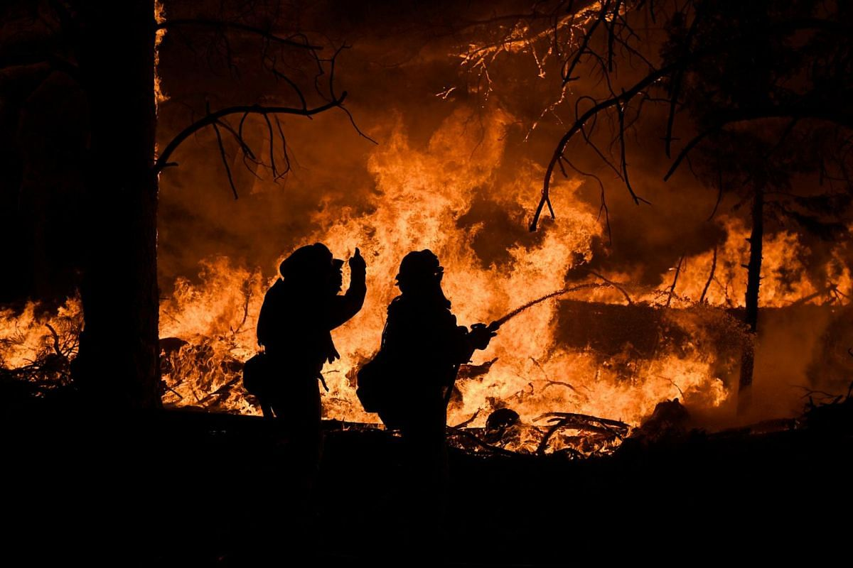 Firefighters battle the Ponderosa Fire east of Oroville on Aug 29, 2017.