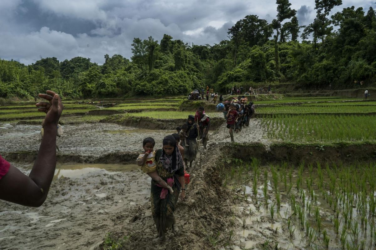 Rohingya refugees from Myanmar crossing the border illegally near Amtoli, on Sept 1, 2017.